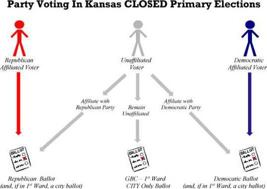 new deh primary election explained graphic