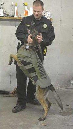 new deh police dog body armor kia pic