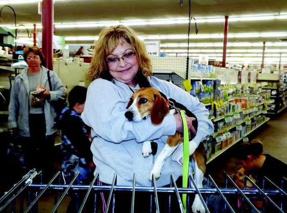 new slt pet adoption MAIN Loretta-w-Maple