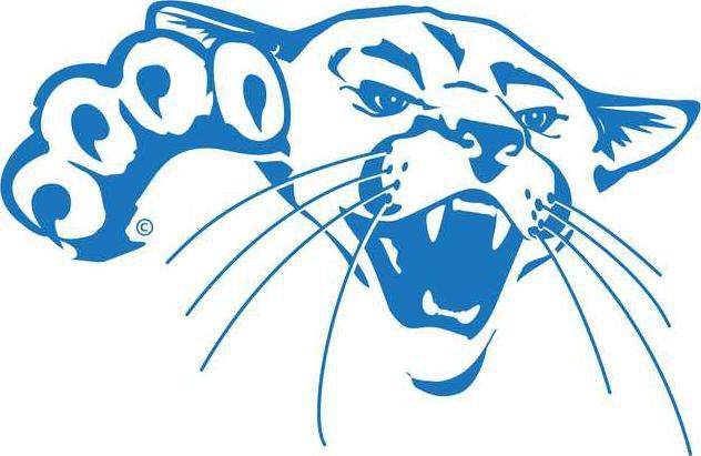 barton cougar headblue .png