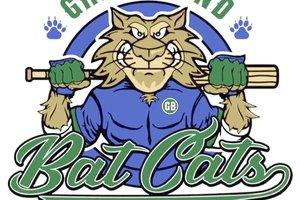 spt_deh_bats cats logo